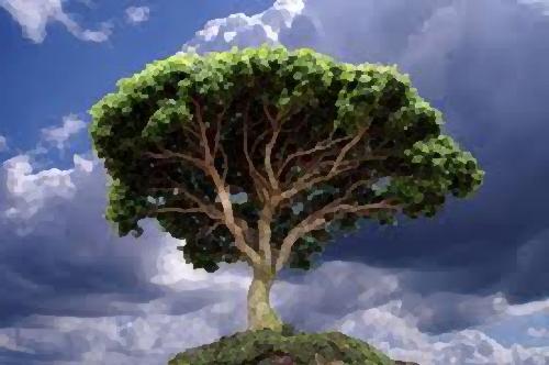 Zirvedeki Ağaç